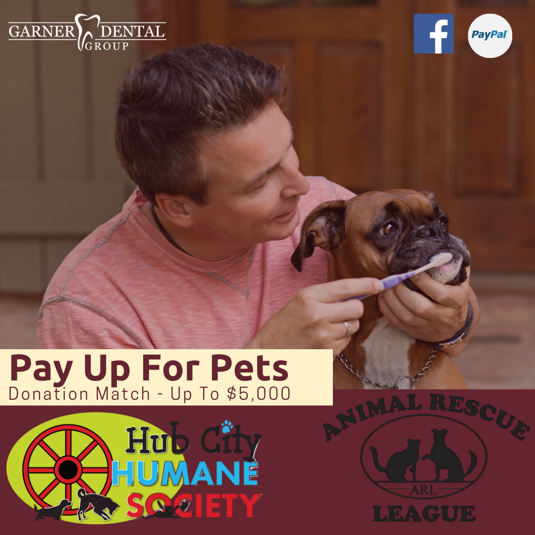 Pay Up for Pets 2020